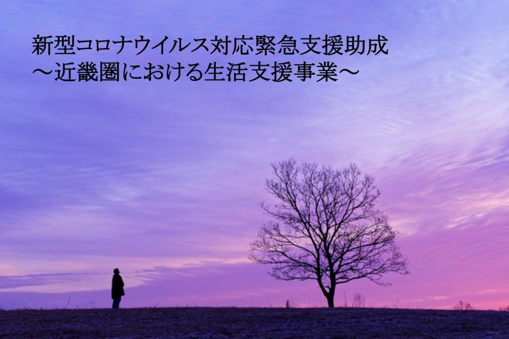 新型コロナウイルス対応緊急支援助成~近畿圏における生活支援事業~採択「実行団体」のご報告